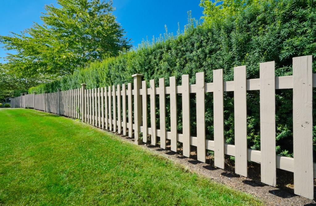 самом забор деревянный фотогалерея фото они